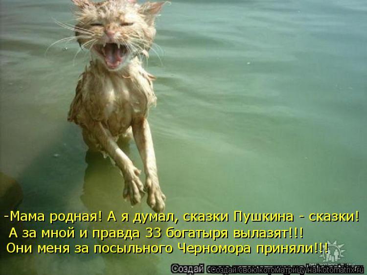 Котоматрица: -Мама родная! А я думал, сказки Пушкина - сказки!  А за мной и правда 33 богатыря вылазят!!!  Они меня за посыльного Черномора приняли!!!