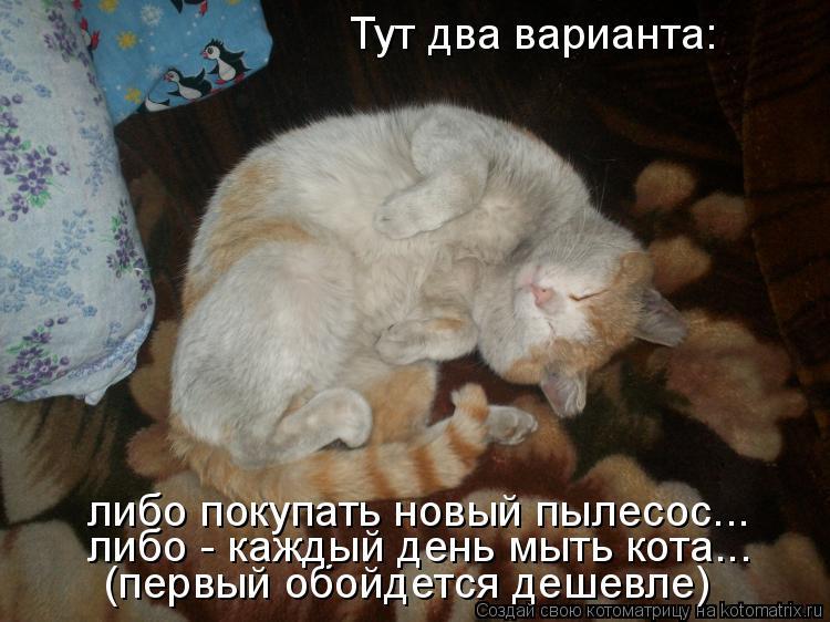 Котоматрица: Тут два варианта: либо покупать новый пылесос... (первый обойдется дешевле) либо - каждый день мыть кота...