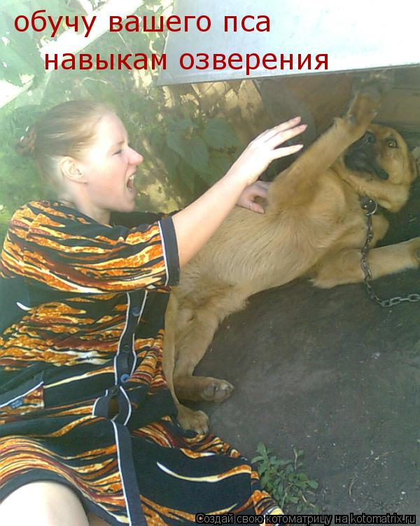 Котоматрица: обучу вашего пса  навыкам озверения