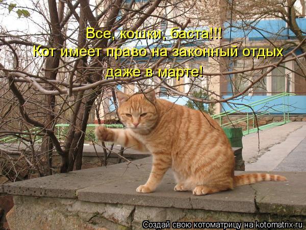 Котоматрица: Все, кошки, баста!!!  Кот имеет право на законный отдых  даже в марте!