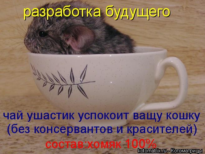 Чай из будущего