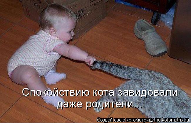Котоматрица - Спокойствию кота завидовали  даже родители...