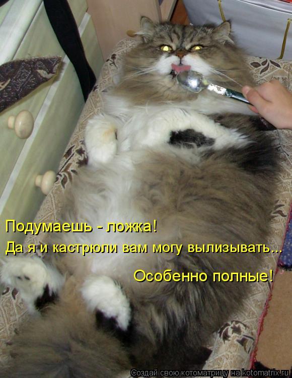 Фото лижет толстой 7 фотография