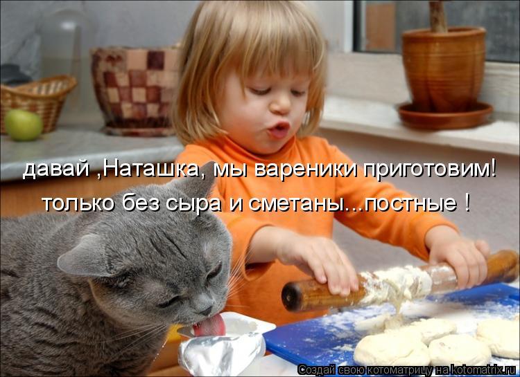 Котоматрица: давай ,Наташка, мы вареники приготовим! только без сыра и сметаны...постные !