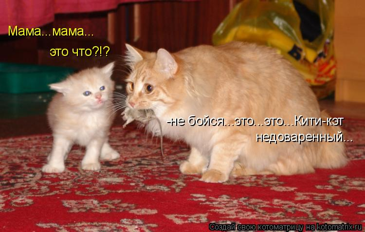 Котоматрица - -не бойся...это...это...Кити-кэт  недоваренный... Мама...мама... это ч