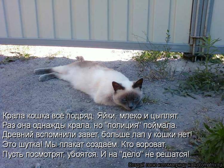 """Котоматрица: Крала кошка всё подряд. Яйки, млеко и цыплят. Раз она однажды крала, но """"полиция"""" поймала. Древний вспомнили завет, больше лап у кошки нет! Это"""