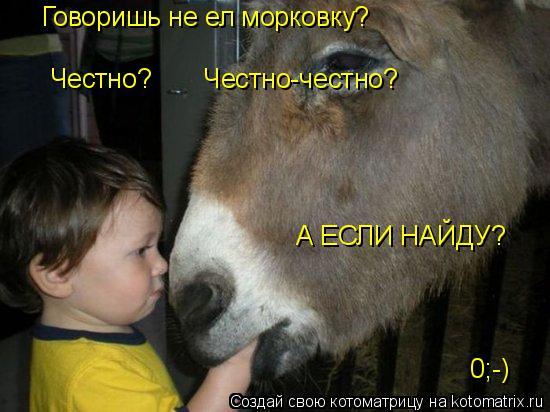 Котоматрица: Говоришь не ел морковку? Честно?       Честно-честно? А ЕСЛИ НАЙДУ? 0;-)