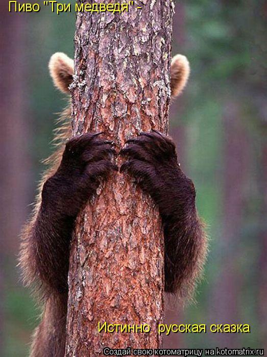 "Котоматрица: Пиво ""Три медведя"" -  Истинно  русская сказка"