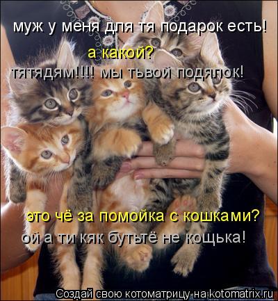 Котоматрица: муж у меня для тя подарок есть! а какой? это чё за помойка с кошками? ой а ти кяк бутьтё не кощька! тятядям!!!! мы тьвой подялок!