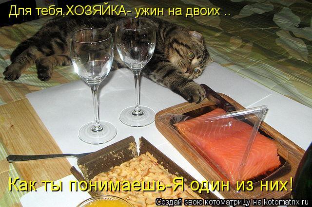 Котоматрица: Для тебя,ХОЗЯЙКА- ужин на двоих .. Как ты понимаешь-Я один из них!