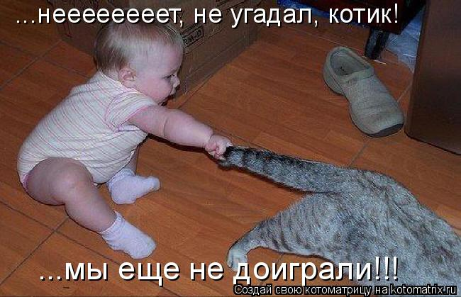 Котоматрица: ...неееееееет, не угадал, котик! ...мы еще не доиграли!!!