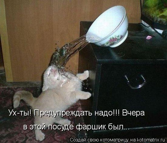 Котоматрица: Ух-ты! Предупреждать надо!!! Вчера в этой посуде фаршик был...