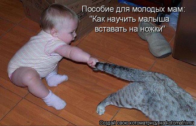 """Котоматрица: Пособие для молодых мам """"Как научить малыша вставать на ножки"""" :"""