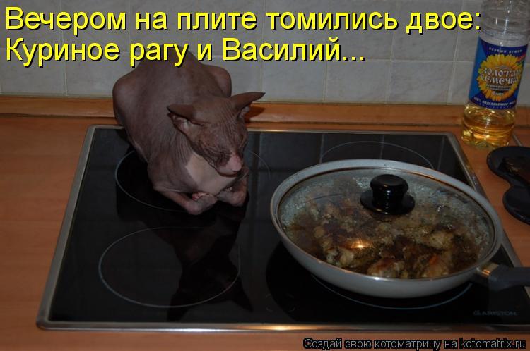 Котоматрица: Вечером на плите томились двое: Куриное рагу и Василий...