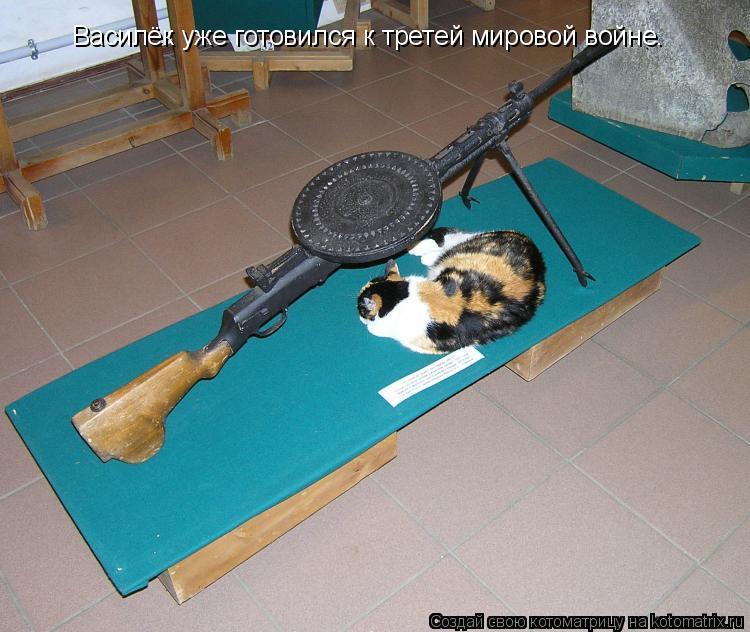 Котоматрица: Василёк уже готовился к третей мировой войне.