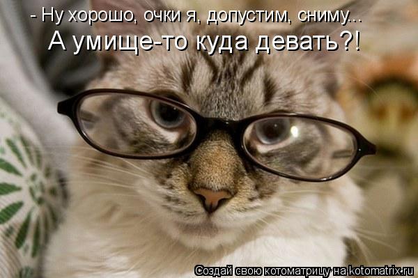 Котоматрица: - Ну хорошо, очки я, допустим, сниму... А умище-то куда девать?!