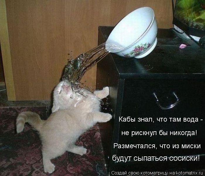 Кабы знал, что там вода - не рискнул бы никогда! Размечтался, что из м