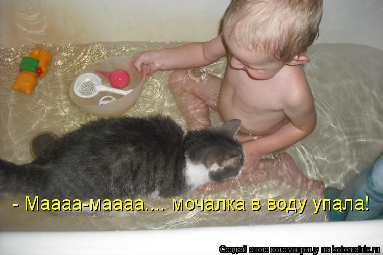 Котоматрица: - Маааа-маааа.... мочалка в воду упала!