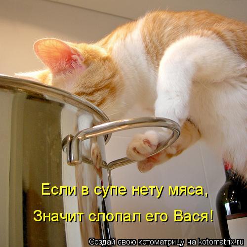 Если в супе нету мяса,  Значит слопал его Вася!