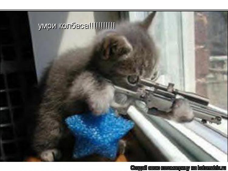 Котоматрица: умри колбаса!!!!!!!!!!!