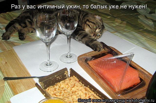 Котоматрица: Раз у вас интимный ужин, то балык уже не нужен!