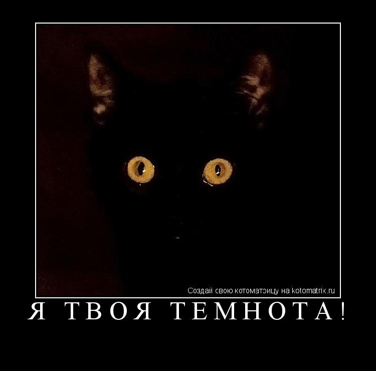 Котоматрица: Я твоя темнота!