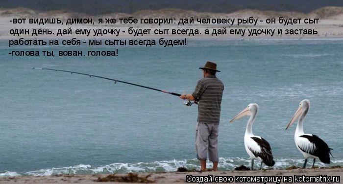 цитата дать удочку но не рыбу