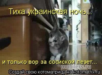 Котоматрица: Тиха украинская ночь... и только вор за сосиской лезет...