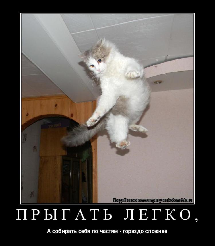 Котоматрица: Прыгать легко, А собирать себя по частям - гораздо сложнее
