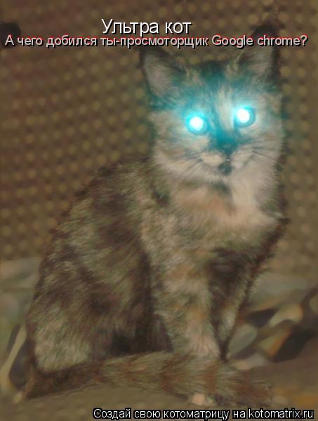 Котоматрица: Ультра кот А чего добился ты-просмоторщик Google chrome? А чего добился ты-просмоторщик Google chrome?