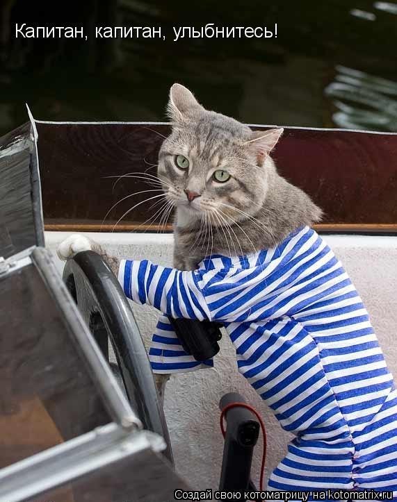 Котоматрица: Капитан, капитан, улыбнитесь!