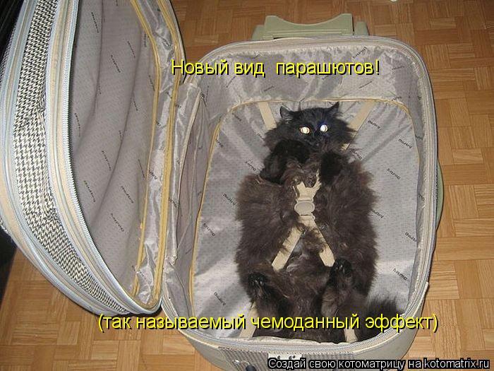 Котоматрица: Новый вид  парашютов! (так называемый чемоданный эффект)