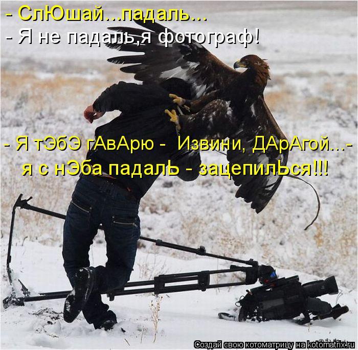 Котоматрица: - СлЮшай...падаль... - Я не падаль,я фотограф! - Я тЭбЭ гАвАрю -  Извини, ДАрАгой...- я с нЭба падалЬ - зацепилЬся!!!