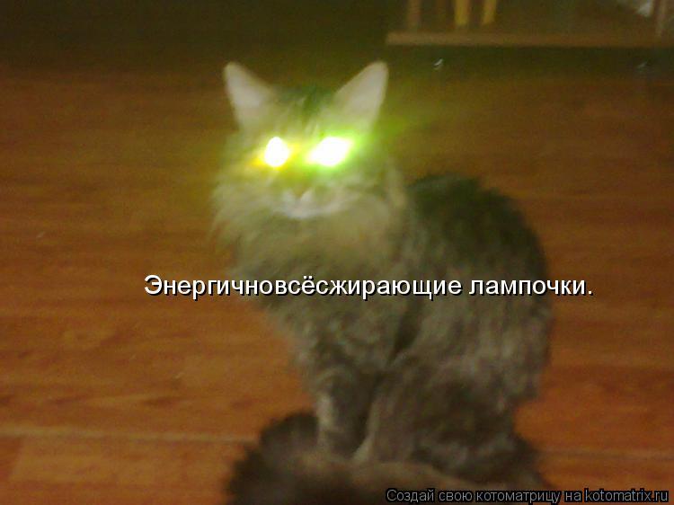 Котоматрица: Энергичновсёсжирающие лампочки.