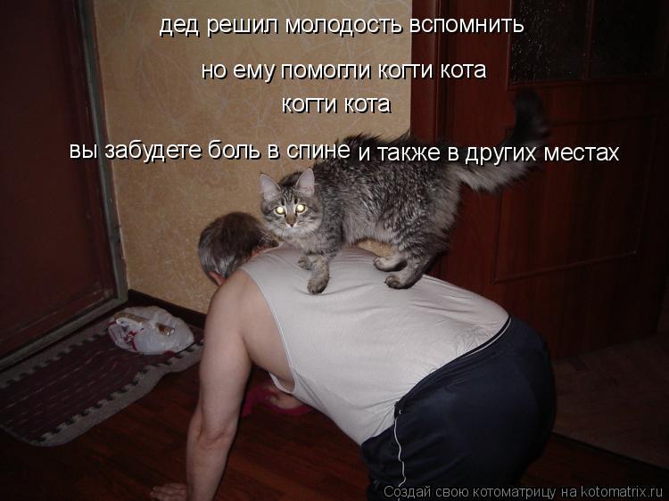 Котоматрица: дед решил молодость вспомнить но ему помогли когти кота  когти кота вы забудете боль в спине и также в других местах