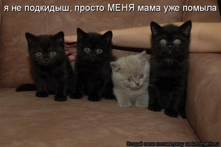 я не подкидыш, просто МЕНЯ мама уже помыла