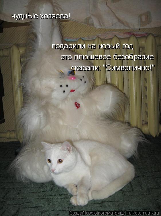 """Котоматрица: подарили на новый год  чуднЫе хозяева! это плюшевое безобразие сказали: """"Символично!"""""""