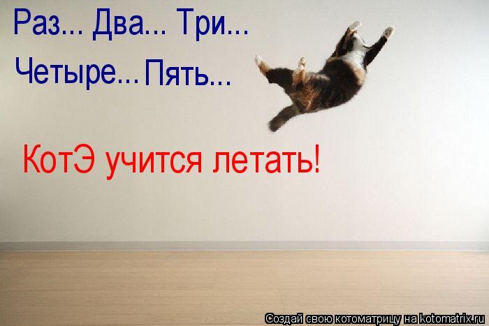 Котоматрица: Четыре... Пять... Пять... Раз... Два... Три... КотЭ учится летать!