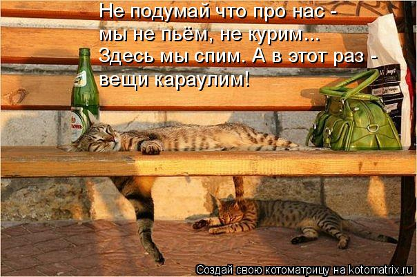 Не подумай что про нас - мы не пьём, не курим... Здесь мы спим. А в эт