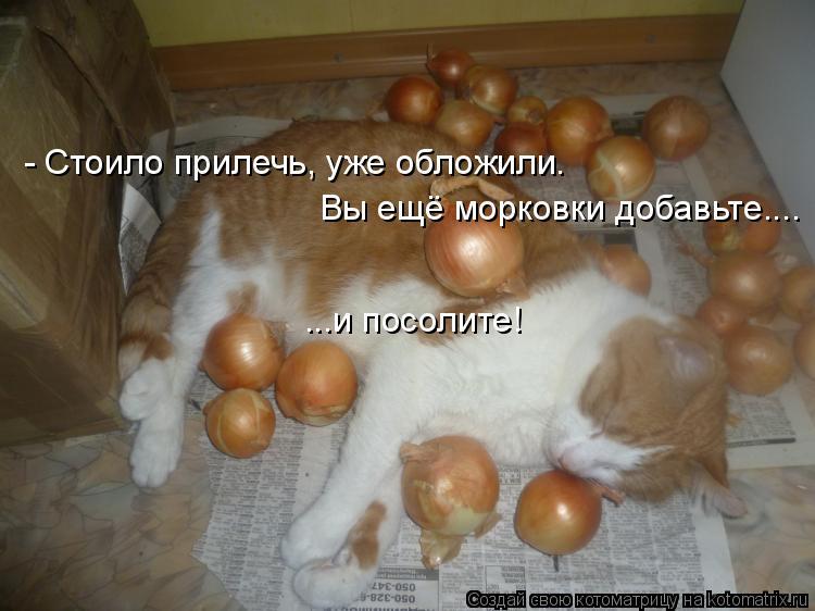 - Стоило прилечь, уже обложили. Вы ещё морковки добавьте.... ...и посо