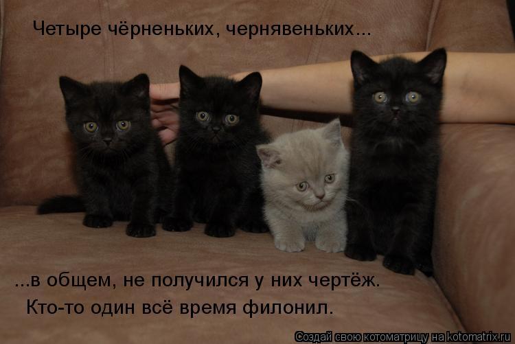 Котоматрица: Четыре чёрненьких, чернявеньких... ...в общем, не получился у них чертёж. Кто-то один всё время филонил.