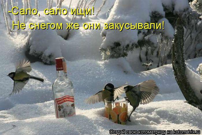-Сало, сало ищи! Не снегом же они закусывали!
