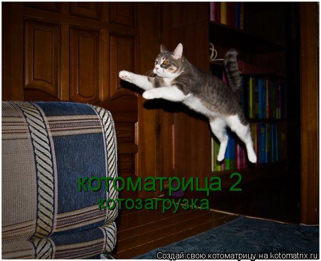 Котоматрица: котоматрица 2 котозагрузка