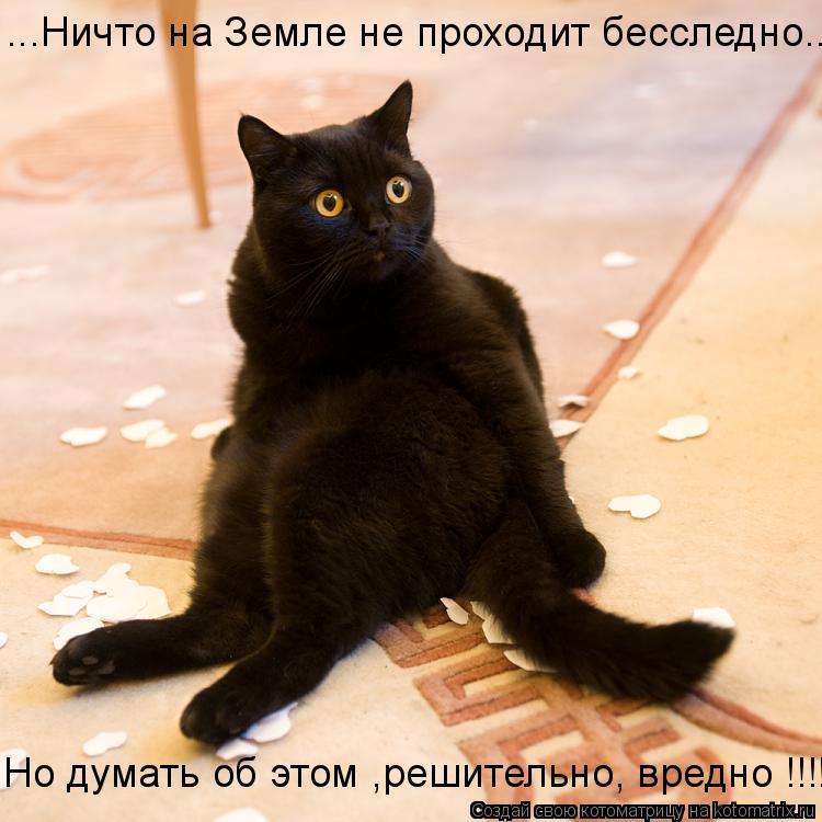 Котоматрица: ...Ничто на Земле не проходит бесследно... Но думать об этом ,решительно, вредно !!!!