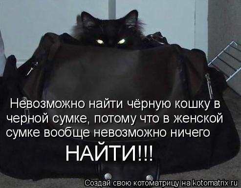 Котоматрица: Невозможно найти чёрную кошку в черной сумке, потому что в женской сумке вообще невозможно ничего НАЙТИ!!!