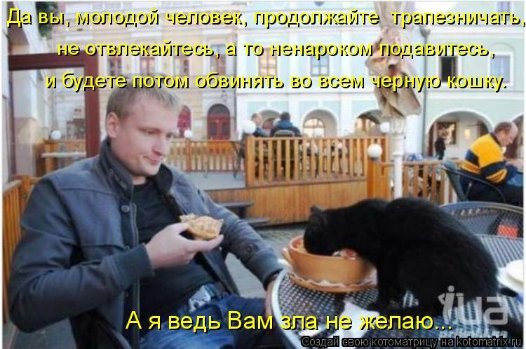 Котоматрица: Да вы, молодой человек, продолжайте  трапезничать,  не отвлекайтесь, а то ненароком подавитесь,  и будете потом обвинять во всем черную кошку