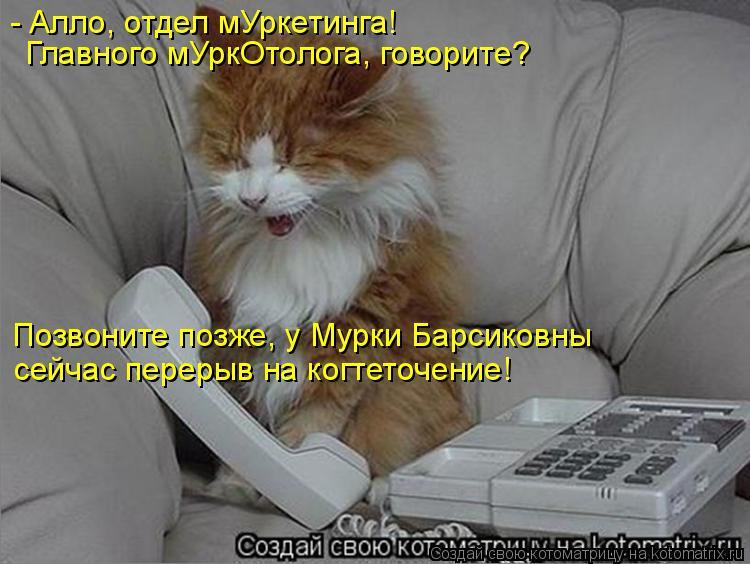 Котоматрица: - Алло, отдел мУркетинга! Главного мУркОтолога, говорите? Позвоните позже, у Мурки Барсиковны сейчас перерыв на когтеточение!