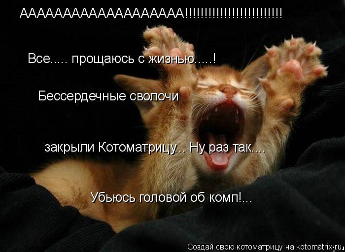 Котоматрица: ААААААААААААААААААА!!!!!!!!!!!!!!!!!!!!!!!!! Все..... прощаюсь с жизнью.....! Бессердечные сволочи  закрыли Котоматрицу... Ну раз так....  Убьюсь голо