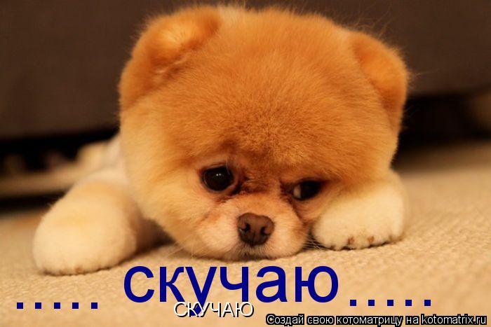 http://kotomatrix.ru/images/lolz/2011/03/27/866507.jpg