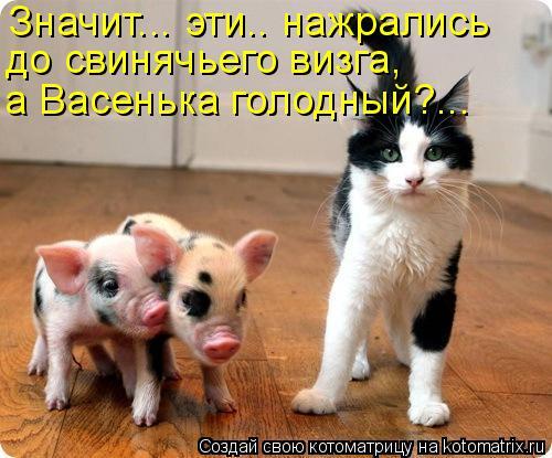Котоматриця!)))) - Страница 3 867260